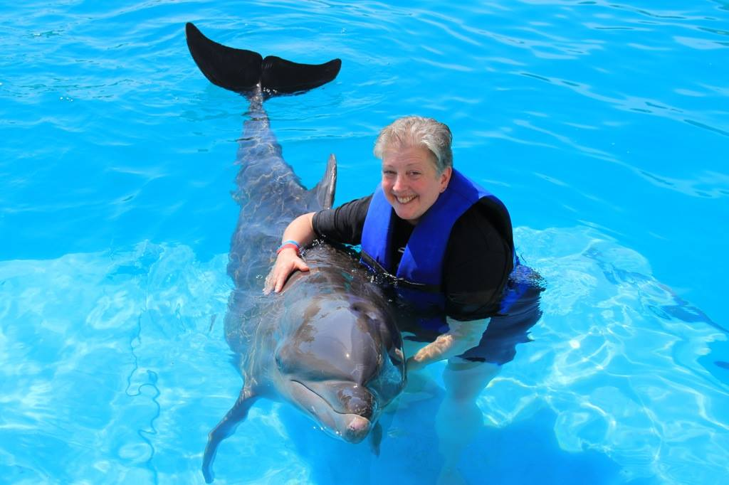Dolphin Hugs