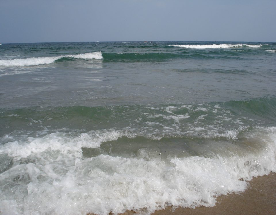 I Love The Shore, The Sand And The Surf